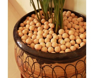 Light Weight Exclusive Clay Aggregates For Plants (1 Kg)