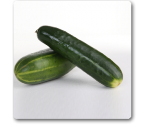 Cucumber F1 American Black - Seeds