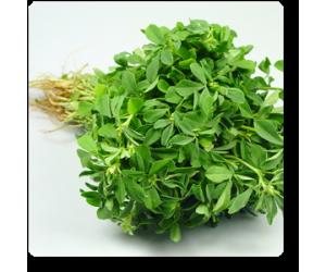Methi Kasturi, Fenugreek - Seeds