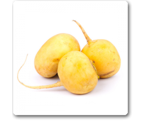 Turnip Imported Golden Yellow - Seeds